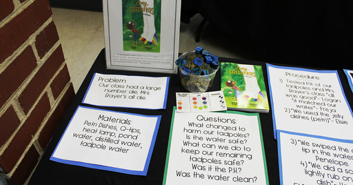 For First Time, Lower School Science Fair Features Projects From K-7 Students